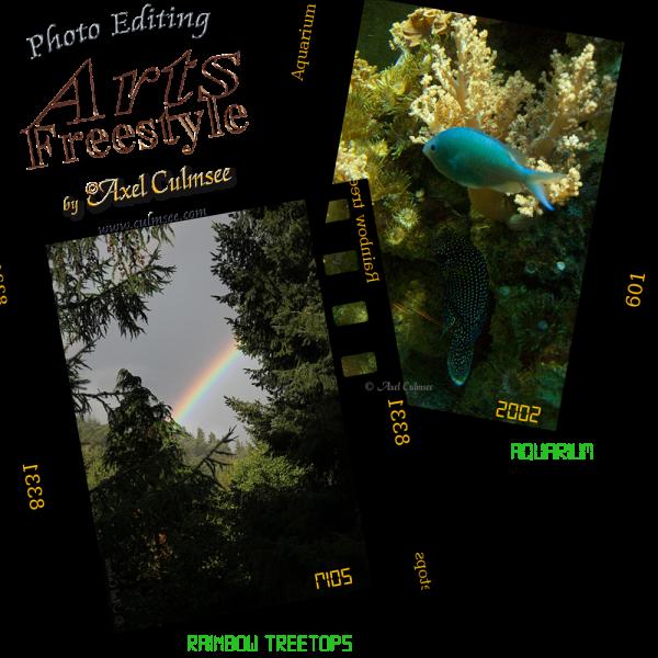Aquarium-Rainbow collage slides ArtsFreestyle