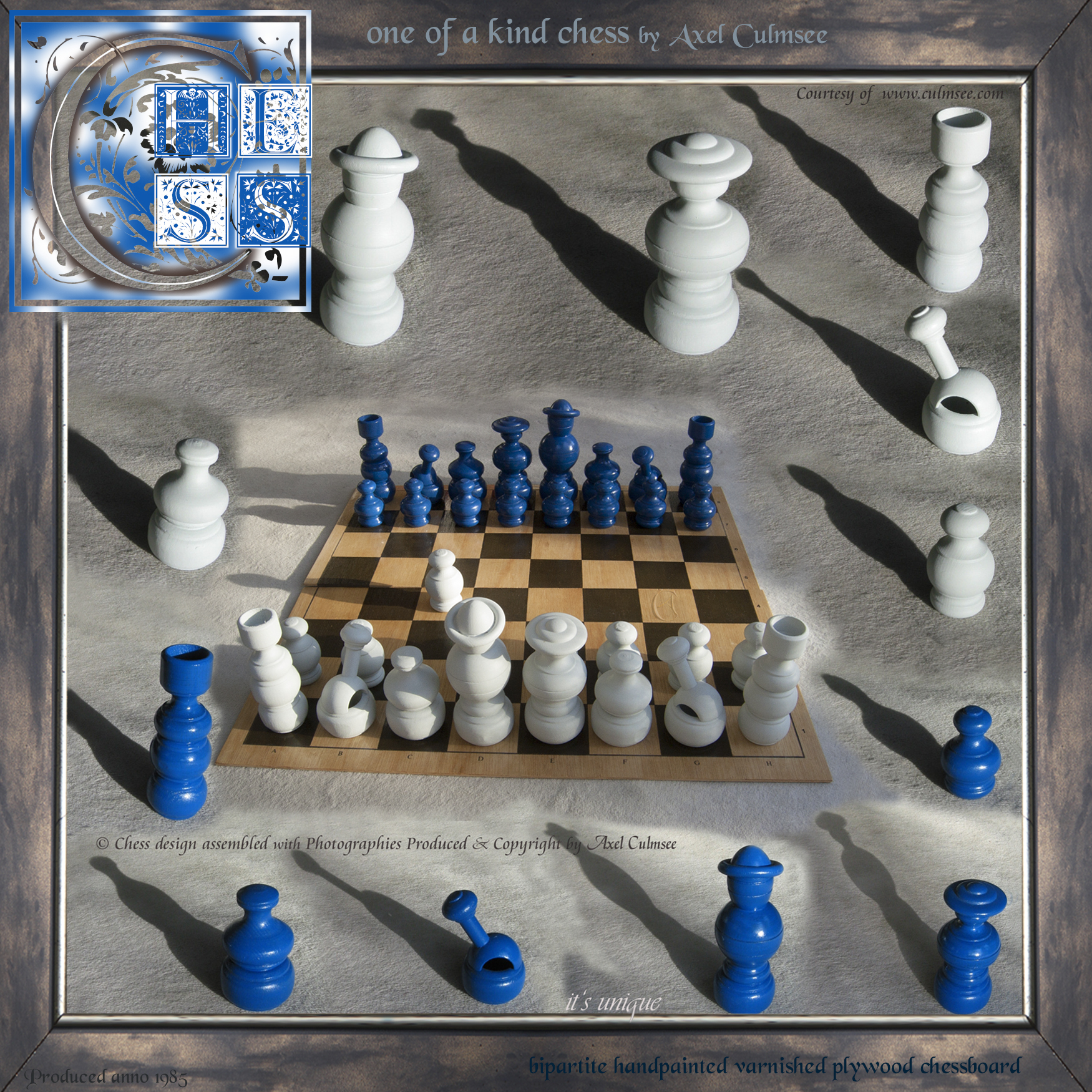 CHESS one of a kind by Axel Culmsee