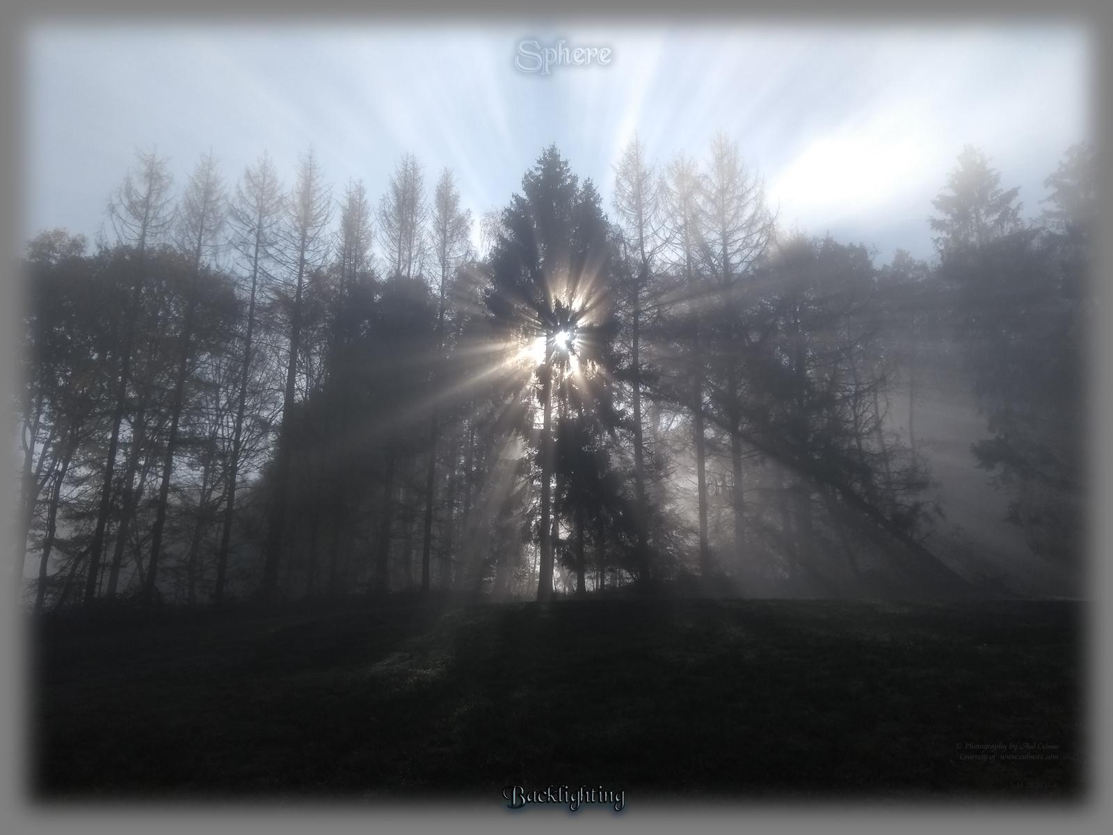 Sphere at Western Forest - November 2020
