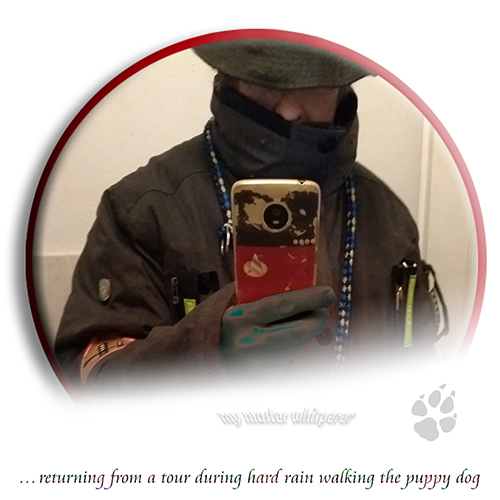 ... returning from a tour during hard rain walking the puppy dog (AC selfie 2020-12)