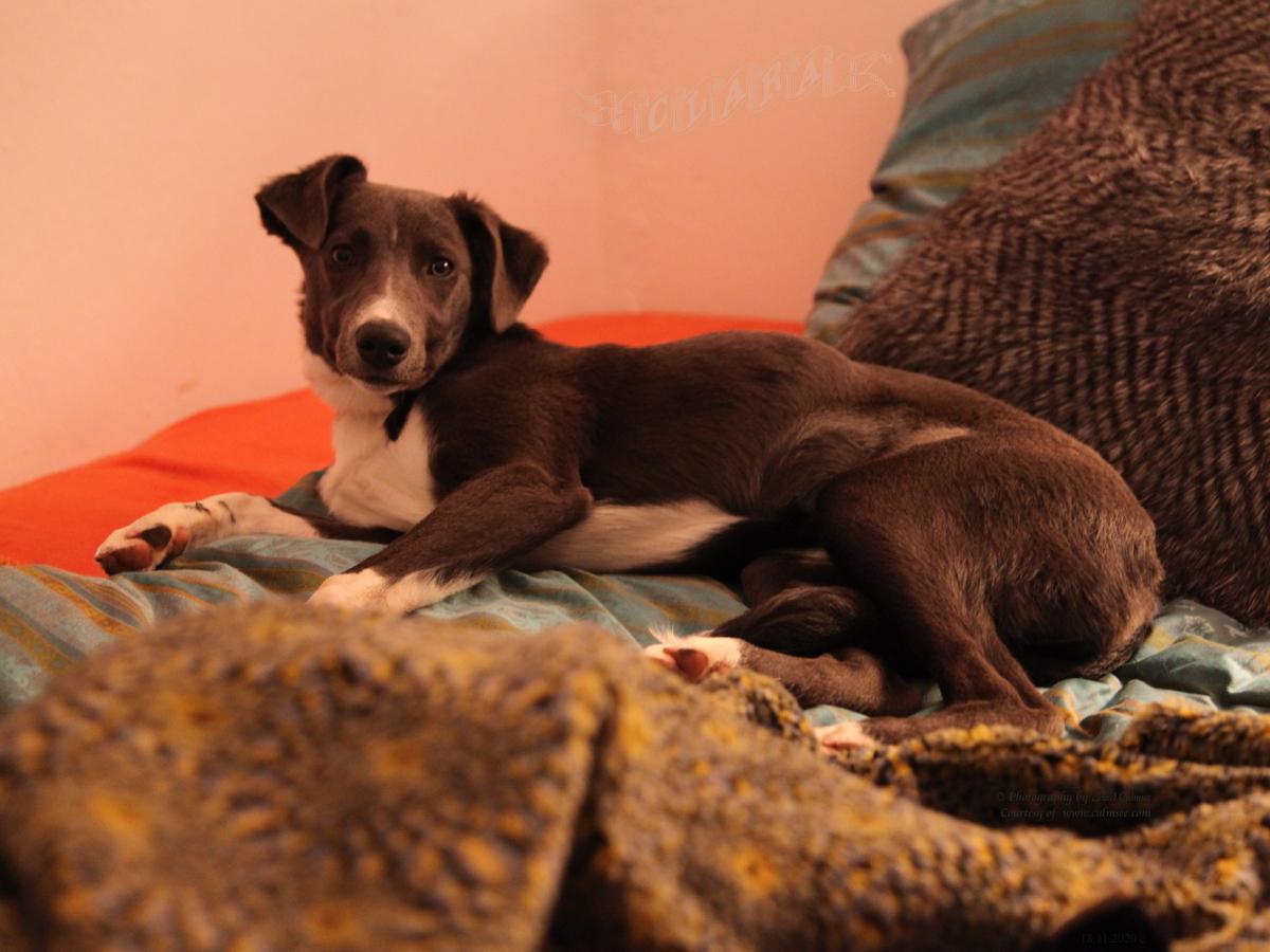 Clara, 6 months