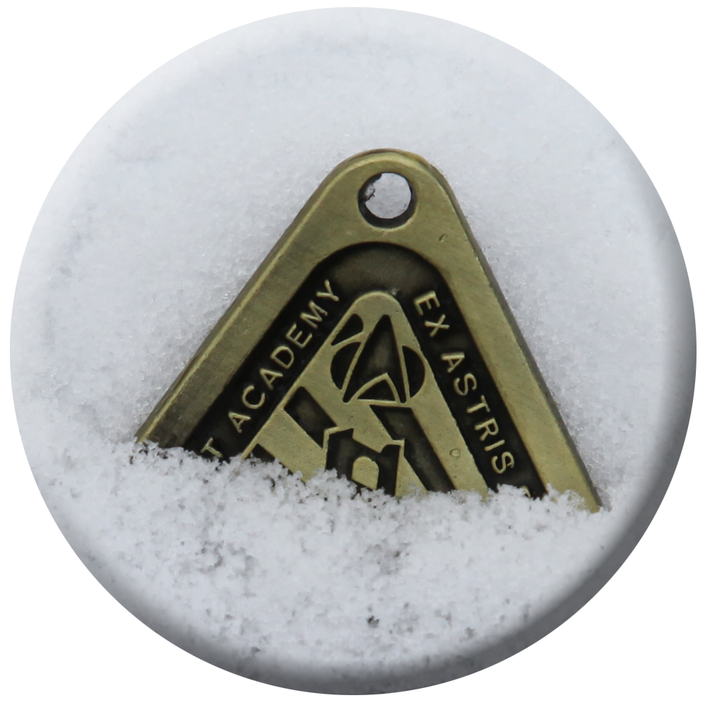 Starfleet Academy insignia - immersed times snow