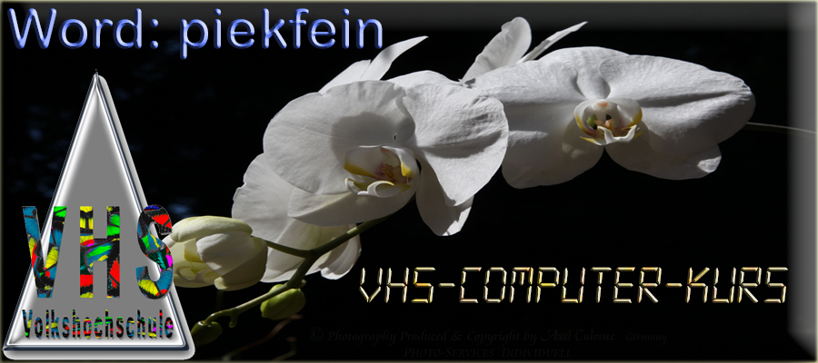 VHS-Computer-Kurs Word piekfein