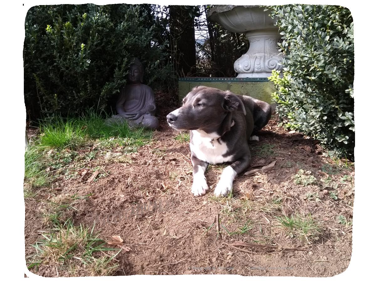Clara, 9 months