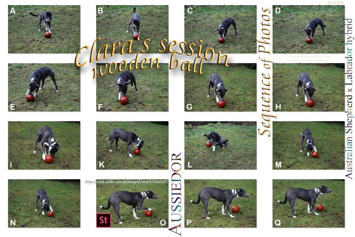 Clara - photo session with wooden ball aged 7 months