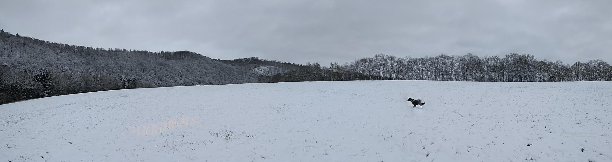 snow during April - Clara 10 months