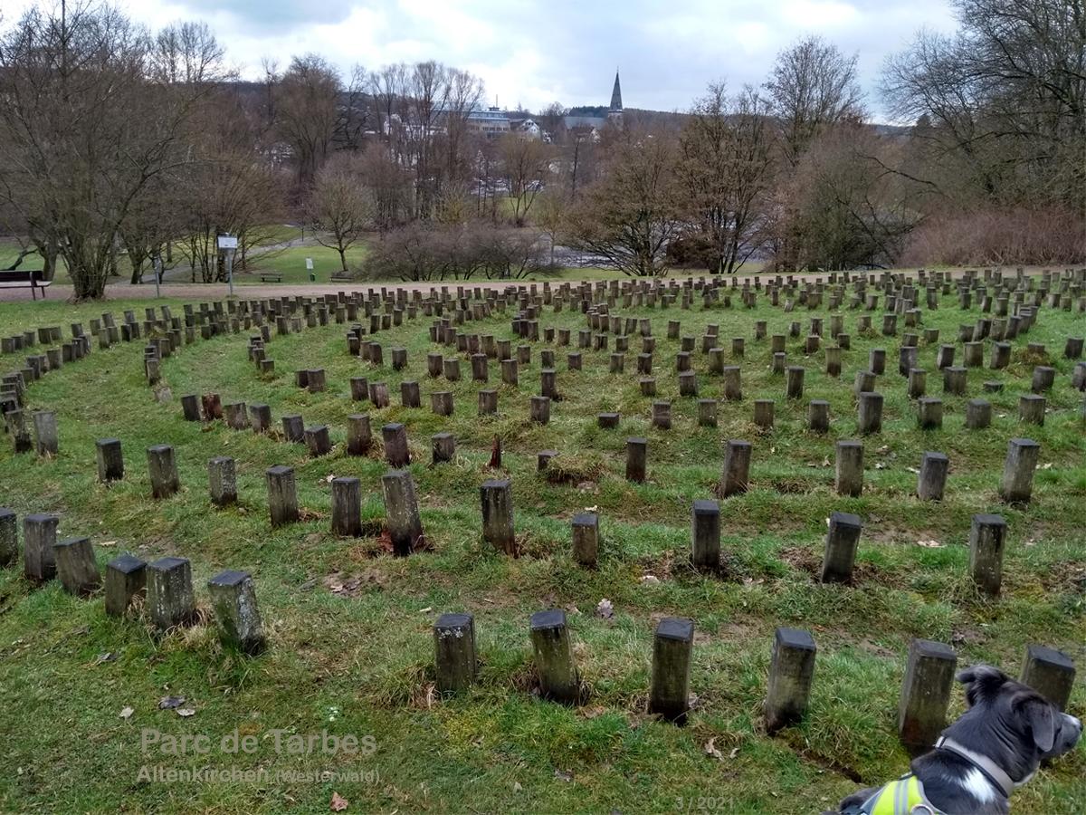 Altenkirchen im Westerwald - Parc de Tarbes mit Knidos Labyrinth