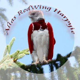 Alias RedWing-Harpyie