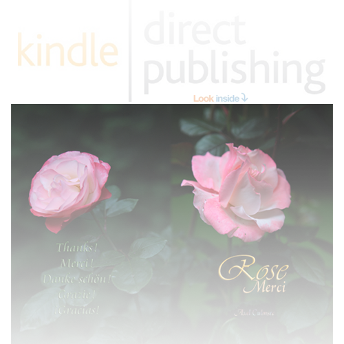 Amazon kdp eBook and booklet von Axel Culmsee Rose Merci