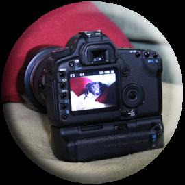 Camera display with Clara Aussiedor