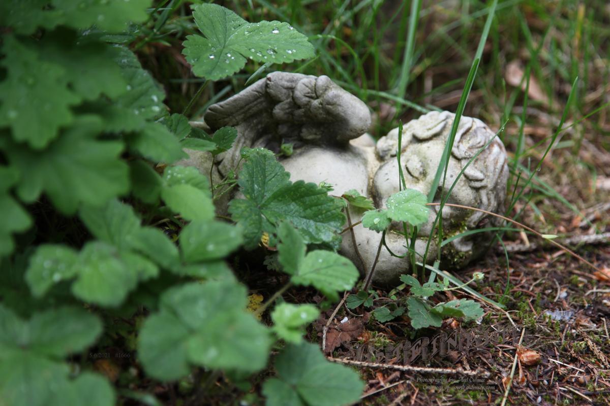 elf of stone asleep in garden