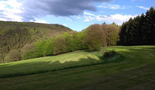 westerwald 2017-05-13 a