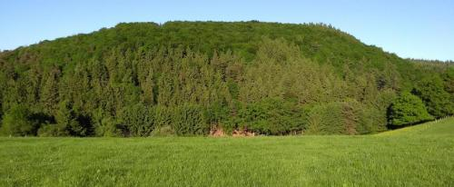 westerwald 2017-05-26 a